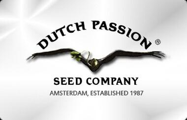 Dutch Passion
